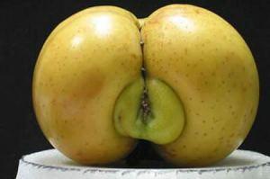 apel vagina